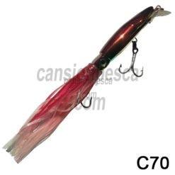 pez calamar picispesca c70