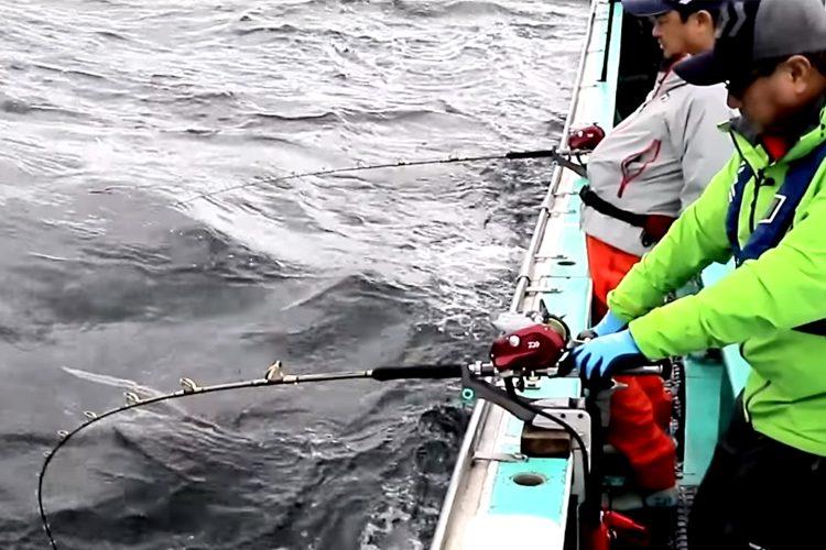 daiwa seaborg