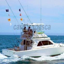 barco bertram 33 11m