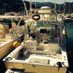 fishing-charter-mallorca-boat-luhrs-10m-01