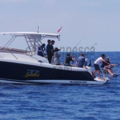 barco sunseeker 37 sportfish 12.12m