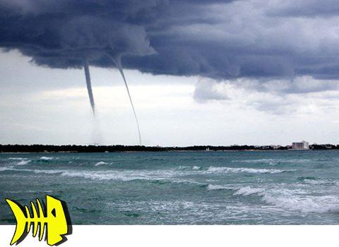 parte-meteorologico