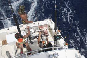 Tenemos todo lo necesario para la temporada de atunes